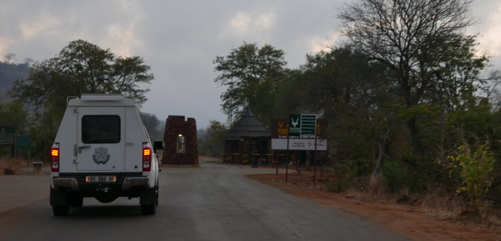 Punda Maria Nord del Kruger
