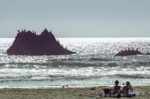 california-dream